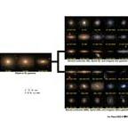 Astronomy 5